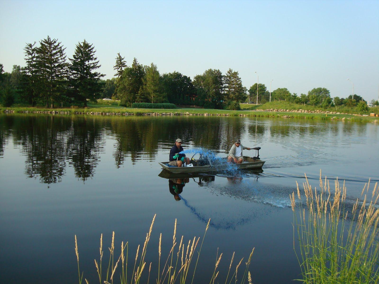 Five Ways Of Algae Control In A Pond Go7 Blog